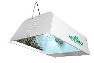 Lamps HPS MH Convertible System   250 watt grow light fixture