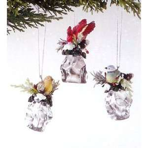 Pack of 6 Holiday Cheer Bird Sitting on Ice Cube Christmas