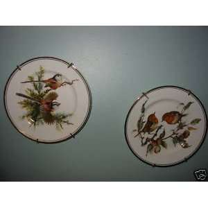 Royal Staffordshire Bone China Bird Plate