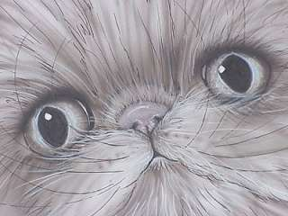 ORIGINAL ART PERSIAN CAT KITTY CAT ARTWORK KIMBEARLYS